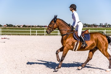 Young girl riding a horse . Equestrian sport in details. Sport horse and rider on gallop .