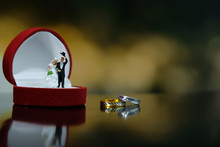 Miniature Wedding Concept - Bride And Groom Greeting With Red Heart Ring Box