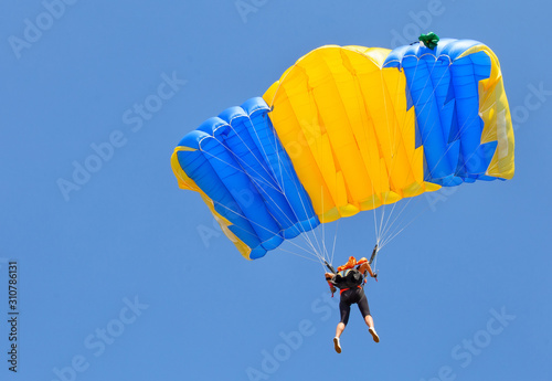 Fototapeta Skydiver under yellow and blue parachute dome