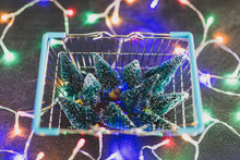 Shopping Basket Full Of Miniature Christmas Trees And Fairy Lights All Around It