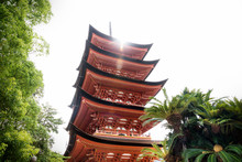 Toyokuni Shrine Five-story Pagoda Low Angle With Sun Beam, Miyajima, Japan