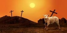 Jesus. Lamb Of God. The Atonin...