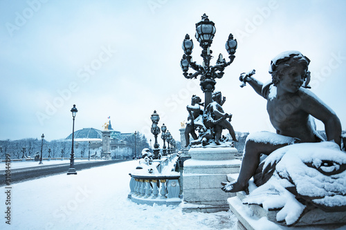 Alexandre III and Invalides building under snow Fototapete