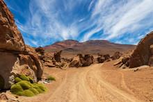Track On The Altiplano In Boli...