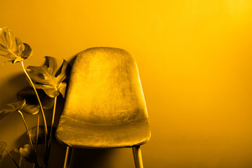 Modern Yellow Velour Chair on wooden legs, toned in yellow image