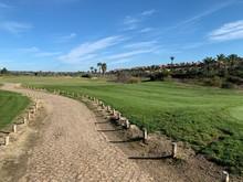 Golf Buggy Path In Tropical Golf Resort