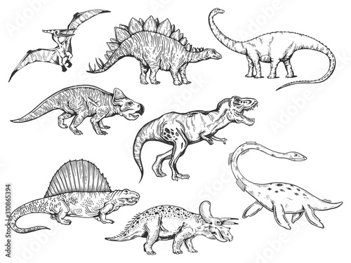 Dinosaur set sketch engraving vector illustration Wallpaper Mural