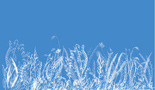 Blue Background With Border Fr...