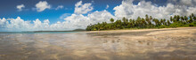 Beaches Of Brazil - Maragogi Beach, Alagoas State