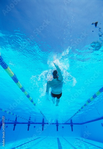 Underwater shot of young male athlete doing backstroke in swimming pool Wallpaper Mural