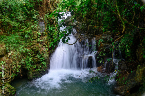 Photo Beautiful streams and waterfalls in the forest in summer.
