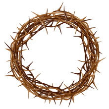 Crown Of Thorns. Color, Artistic, Graphic Drawing Of A Crown Of Thorns With Thorns On A White Background.