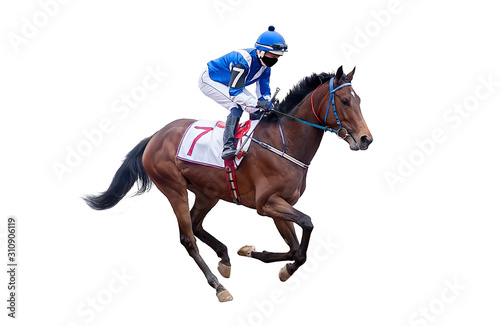 Stampa su Tela horse jockey racing isolated on white background