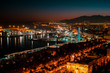 Malaga city at night