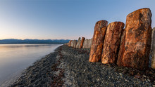Goose Spit Regional Park Beach With Logs On Vancouver Island, In The Comox Valley, British Columbia, Canada