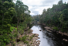 Arthur River Through Tarkine N...