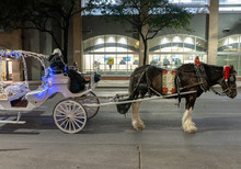 A Christmas Horse And Carriage