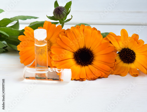 Obraz Fresh orange flowers of calendula officinalis and bottles of cosmetic oils. close-up on a light background. The concept of cosmetology. copy space - fototapety do salonu