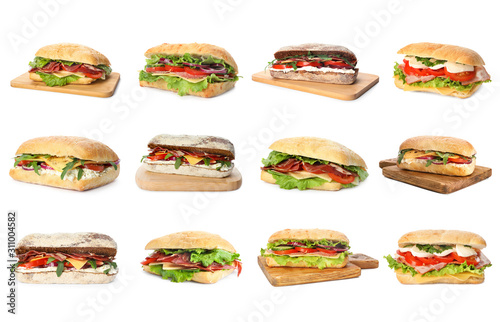 Obraz na płótnie Set of delicious sandwiches on white background