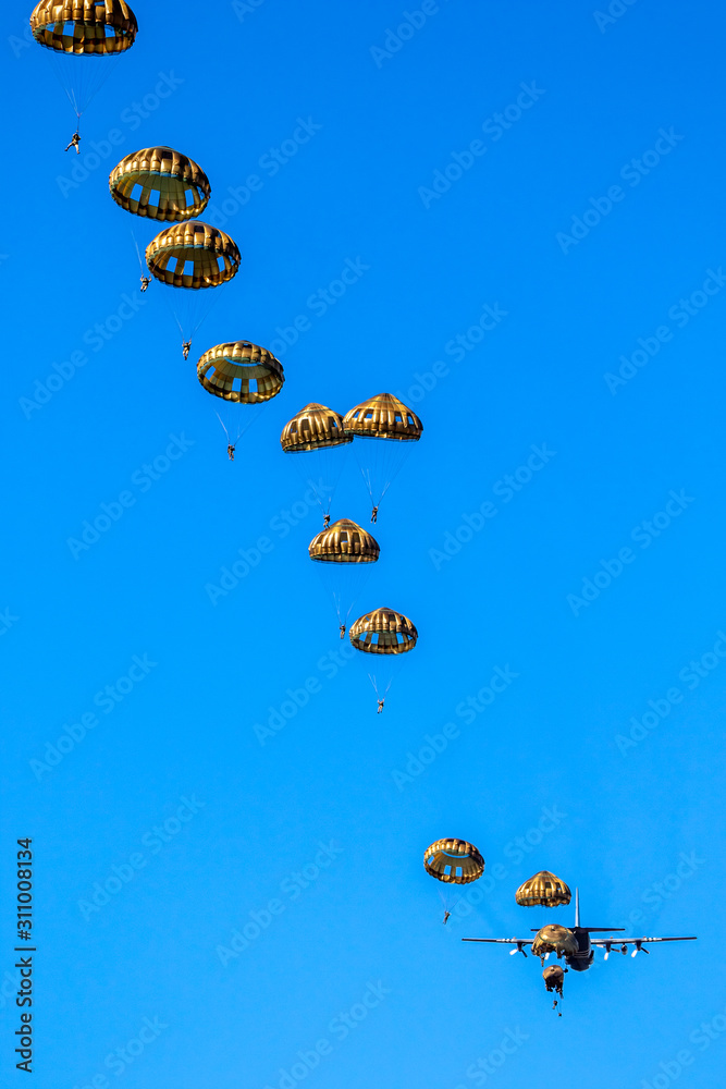 Fototapeta Military parachutist paratroopers jumping out of an air force airplane.