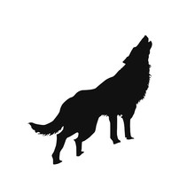Silhouette Of A Howling Wolf O...