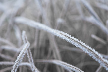 Frost Frost With Ice Crystals ...