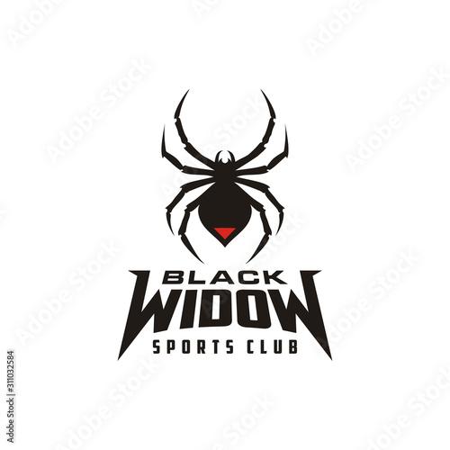 Photo Silhouette Black Widow Spider Insect Arthropod Emblem Sport logo design
