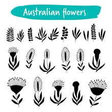 Set Of Australian Flowers, Black Silhouettes