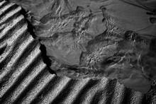 Monochrome Sand Texture Patter...