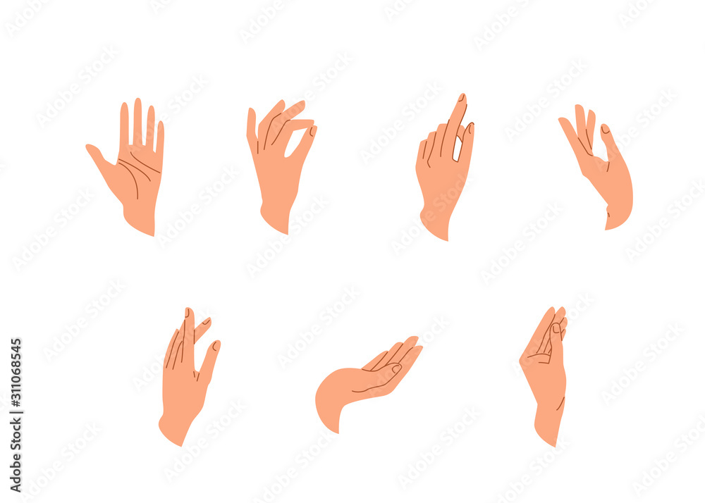 Fototapeta Hands vector set in simple flat trendy style isolated on a white background. Various gestures, poses of human hand in different situation. Vector illustration