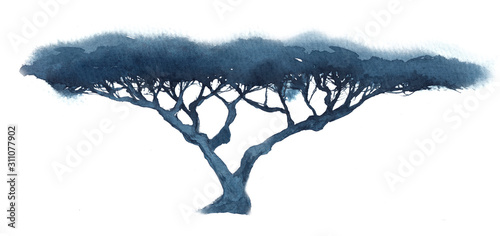 Watercolor illustration of a silhouette of a branchy tree, acacia in blue tones Wallpaper Mural