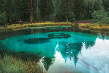 A Very Beautiful And Turquoise Geyser Lake In Russia, In The Altai Republic. National Reserve. Aqua Menthe Color. Mixed Forest With Pines And Cedars