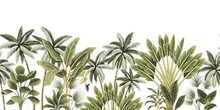 Tropical Vintage Botanical Palm Trees, Banana Tree Floral Seamless Border White Background. Exotic Jungle Wallpaper.