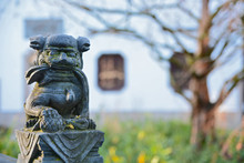 Detail Of A Small Lionsculpture In The Chinese Garden In Frankfurt, Germany