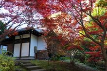昔ながらの日本家屋と...