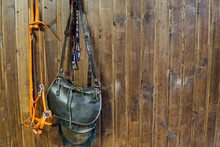Saddle Horse Reins On Brown Wo...