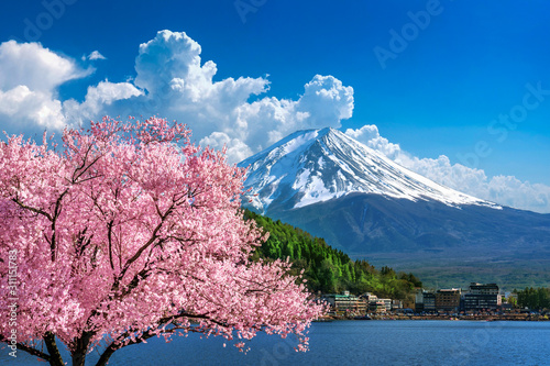 Fuji mountain and cherry blossoms in spring, Japan. Poster Mural XXL