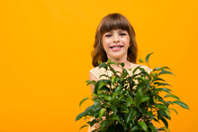 Smiling Girl With Flower In Po...
