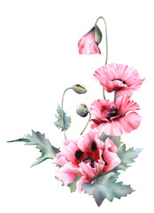 Fototapeta Do salonu Hand drawn watercolor floral arrangement with picturesque poppies, buds and leaves isolated on a white background. Floral botanical illustration for wedding invitations, cards, patterns.
