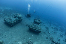 Diving In Jordan In Aqaba, Whe...