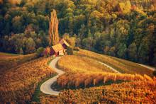 Heart Shaped Wine Road In Slov...