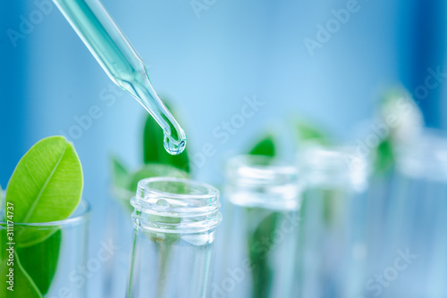 Fotografering Dropper over test tube dropping sample chemical into sample herbal plaint , biotechnoloy research concept