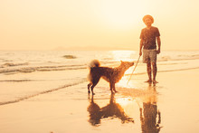 A Man And A Dog Stand On The Beach And Sunset, Sunrise.