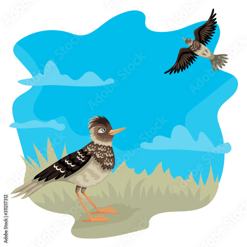 Valokuvatapetti Lark from the ground looks up at a flying bird. Vector characters