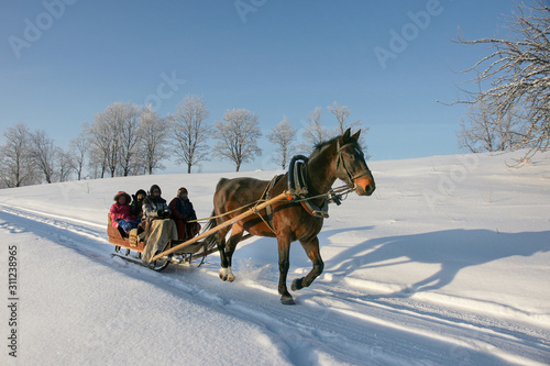 Obraz brown horse pulling sleigh with peoples, winter wounderland landscape - fototapety do salonu