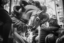 Caballo De Carrousel O Tiovivo En Blanco Y Negro