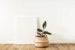 Leinwanddruck Bild - Blank canvas with empty mockup copy space. Home plant ficus elastica robusta in rattan pot. Minimal artist studio interior concept.