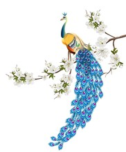 Peacock Standing On Branch Of ...