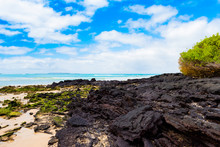 View Of The Rocky Beach, Galapagos Island, Isla Isabela.
