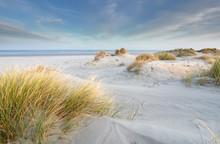 Sand Dunes At North Sea Beach